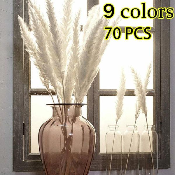 Home & Kitchen, Decor, phragmitescommuni, Family
