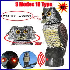 Owl, owldecoy, birdpestscarer, Hunting