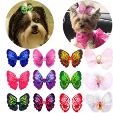 butterfly, Pets, Accessories, Dogs