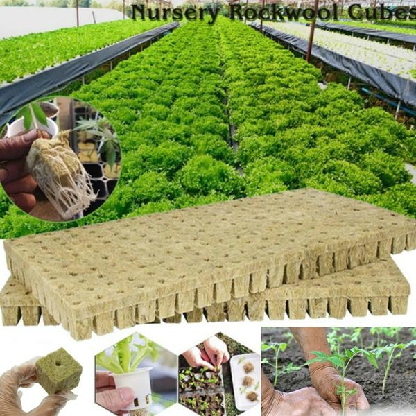 Mini, plantcontain, gardenhydroponic, hydroponic