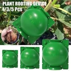 case, Box, Plants, growingbox