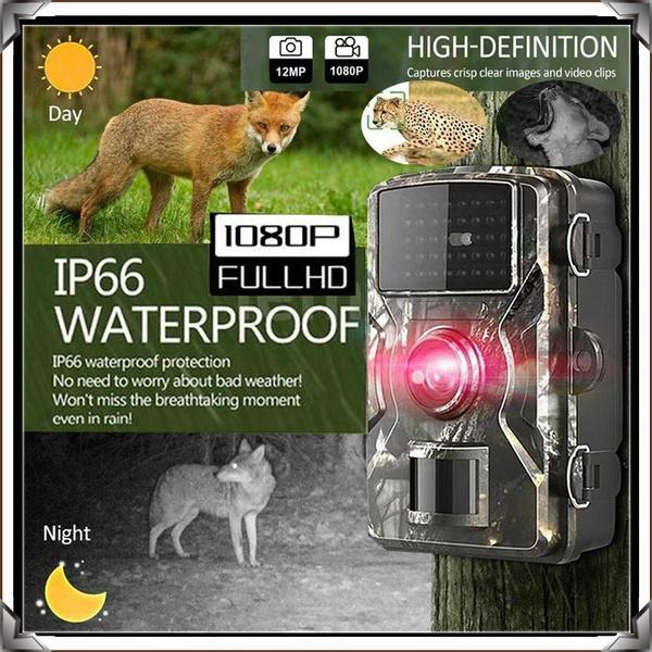 Outdoor, Waterproof, Photography, huntingcamerawaterproof