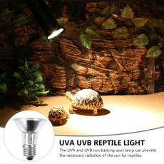 ultravioletbulb, Lamp, reptilebask, Lighting