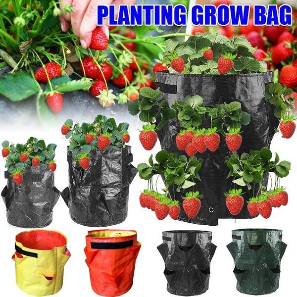 vegetabletool, Outdoor, Garden, Bags