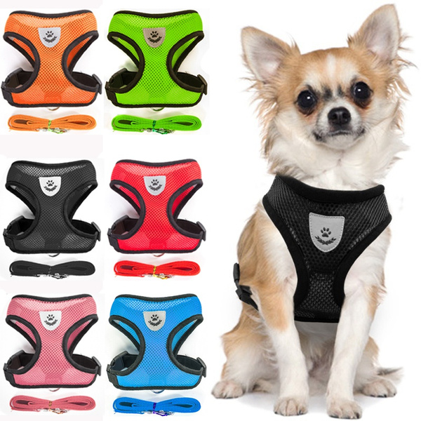 Vest, puppy, leashfordog, harnesseslead