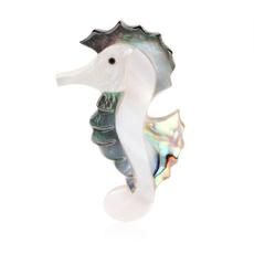 shells, Natural, Gifts, seahorse
