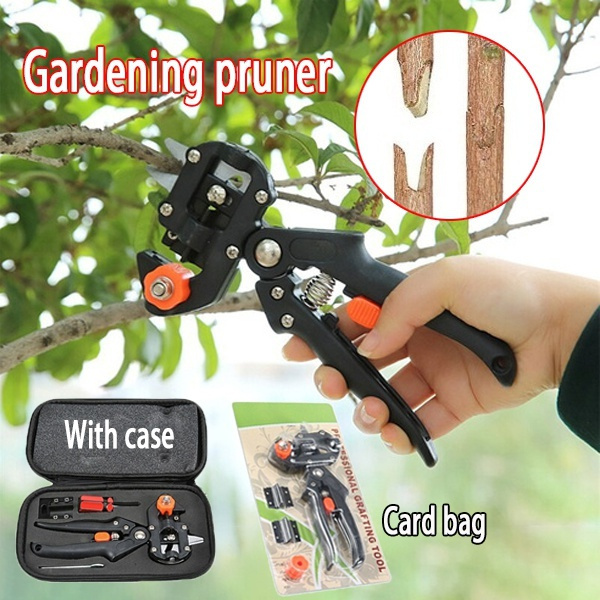 Plants, Garden, Gardening Tools, fruittreeshear