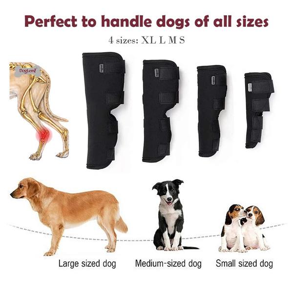 Leggings, petaccessorie, Pets, dogleggingsbandage