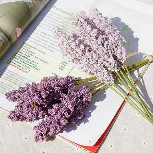 Home & Kitchen, Plants, Flowers, PC