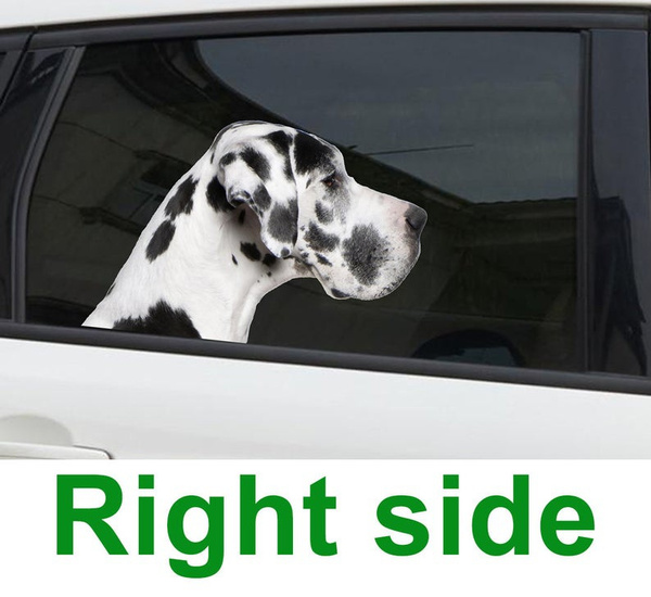Funny, great, Decal, Cars