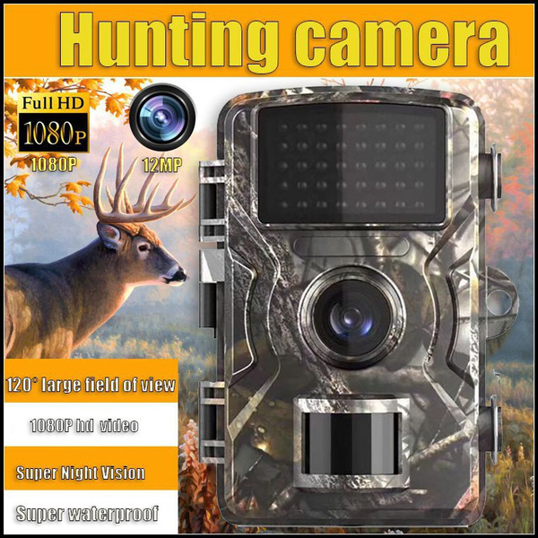 trailcamera, nightvision, Photography, sportsampoutdoor