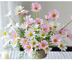 Flowers, chamomile, Photography, Wedding