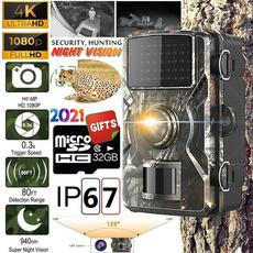 wildlife, Outdoor, huntingcam, Hunting