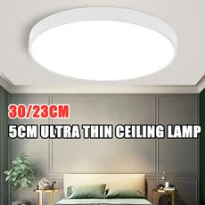 led, ceilinglightfixture, Modern, acryliclamp