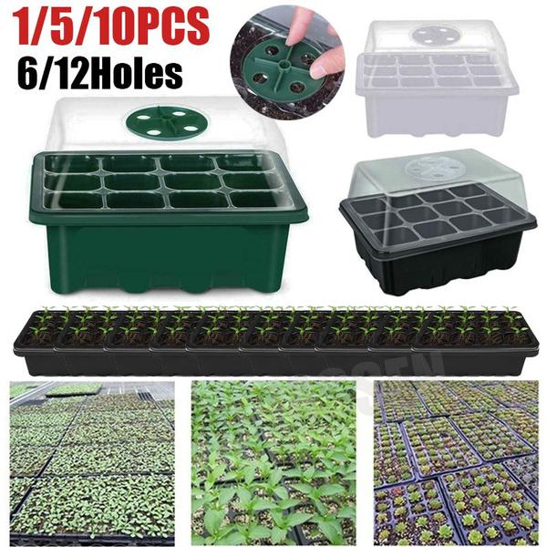 Box, Flowers, Garden, seedplantingkit