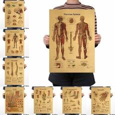 Vintage, art, Skeleton, studyonbody