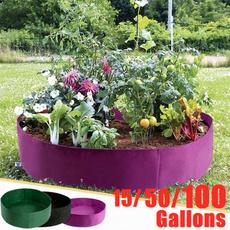Box, gardenbed, Plants, Flowers