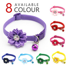 Flowers, Dog Collar, Jewelry, catcollar
