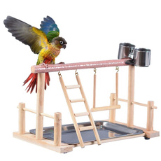 perch, Toy, center, Parrot