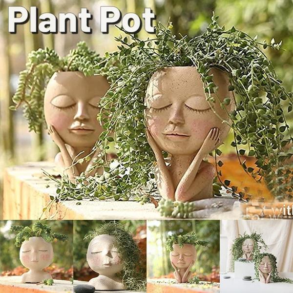 cute, Plants, Flowers, planter