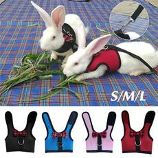 Vest, Harness, rabbit, Animal