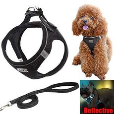 Vest, Medium, blackharnessdog, puppy