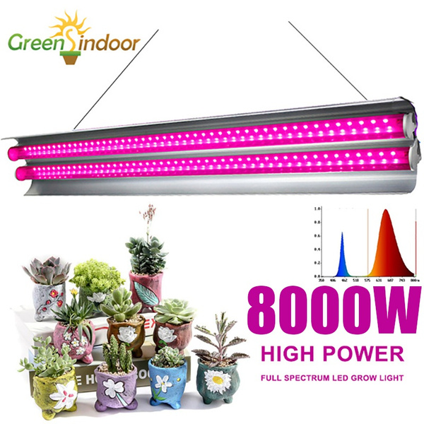 plantlamp, Plants, growlamp, led