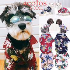 cute, Fashion, Summer, petshop