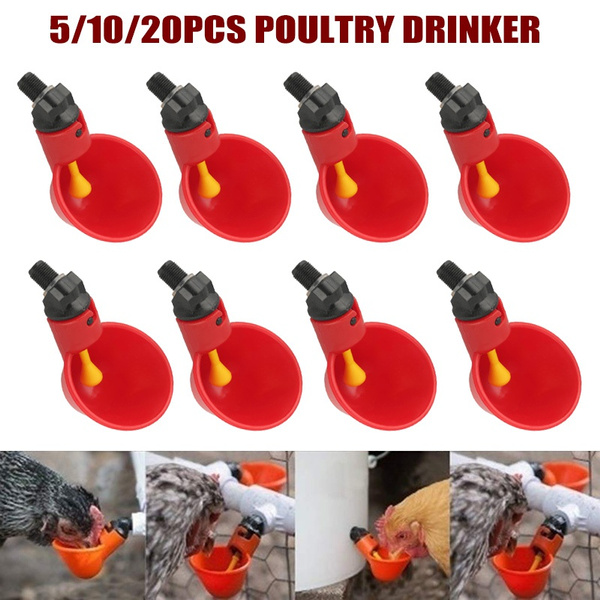poultry, water, portable, poultrywaterdrinkingcup