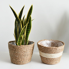Plants, Outdoor, Picnic, Handmade