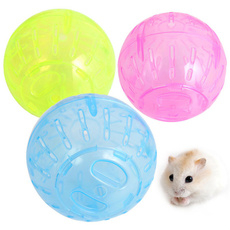 Toy, plasticball, petaccessorie, Pet Toy