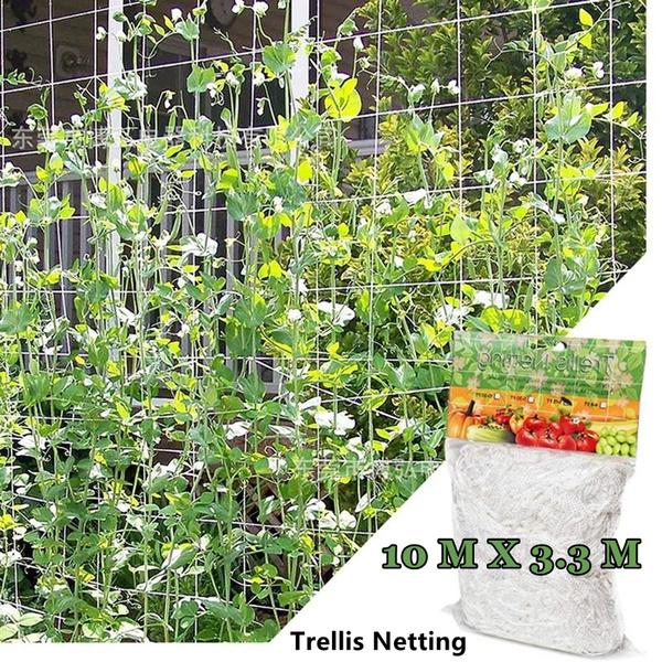 Plants, Protective, Gardening, Garden