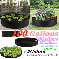 Box, Plants, Flowers, Capacity