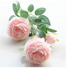decoration, Flowers, Gardening, peony