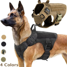 Vest, Harness, Pets, Buckles