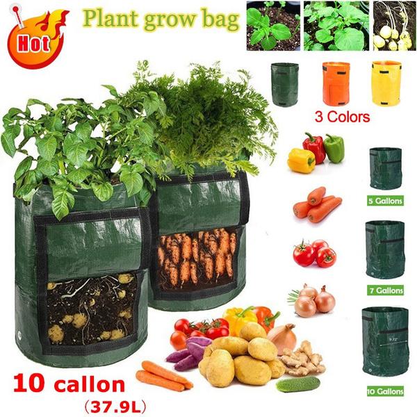 Plants, wovenfabric, vegetableplantingbag, potatogrowbag