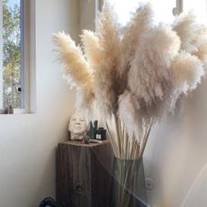Home & Kitchen, Plants, Flowers, Home Decor