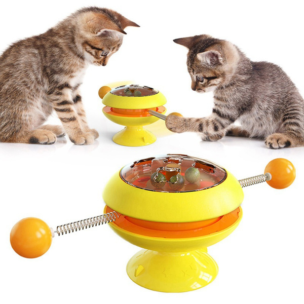 Funny, cattoy, Toy, Cup