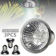 Light Bulb, reptile, Fashion, tortoise