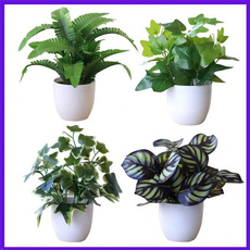 plasticflower, Bonsai, Plants, Flowers