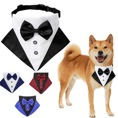 bowknot, Fashion, Dog Collar, petaccessorie