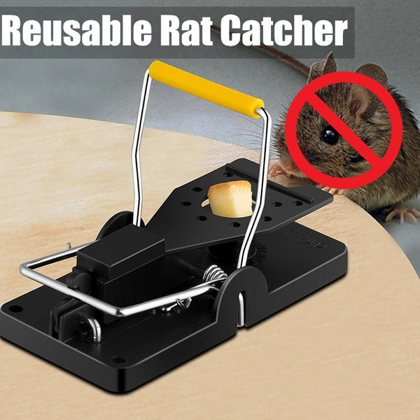 housekeeping, mousecatcher, Spring, mousesnaptrap