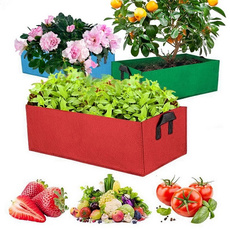 Box, gardenbed, Plants, plantingpotvegetable