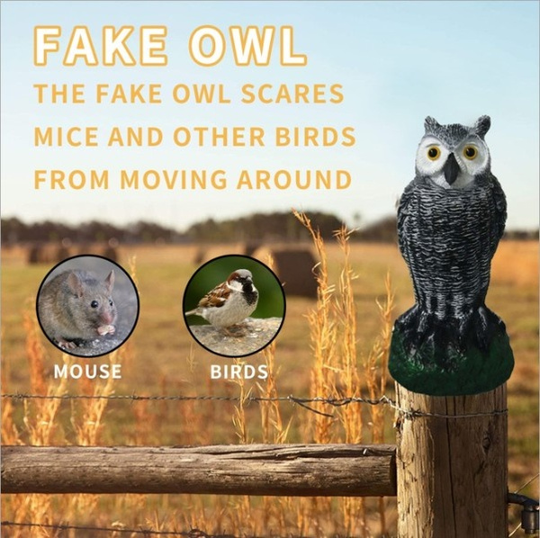 Owl, owldecoy, birdpestscarer, owldecor