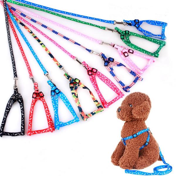 Adjustable, Dog Collar, Chain, leadleash