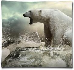 case, bedthrowpillow, sofapillow, Bears