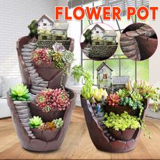 Bonsai, Home & Kitchen, Flowers, planter