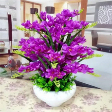 Bonsai, Plantas, Flowers, Garden