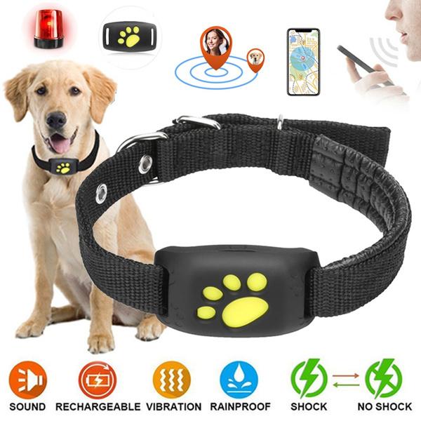 Rechargeable, Dog Collar, usb, Gps