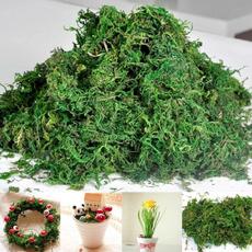 Home & Kitchen, Plants, Flowers, diyembellishment